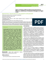 Morphological Characterization of Pichia Guilliermondii and Saccharomyces Cerevisiae Yeast and Their Effects on Adherence of Intes