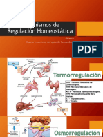 Mecanismos de Regulación Homeostática