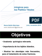 lima08platillostibiales2demayo-141126232108-conversion-gate01.pdf