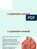 4_ Lezione Surreni 2_ parte.ppt