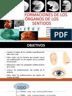 Expo Seminario Embrio
