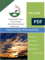 dummy report digital_image_watermarking.docx