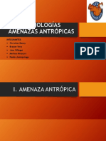 GRUPO-V-TA.AA..pptx