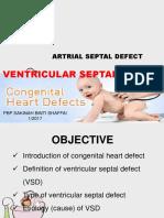 Congenital Heart Defect-Vsd