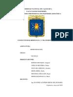 CONDUCTIVIDAD HIDRAULICA Y TRANSMISIVIDAD.docx