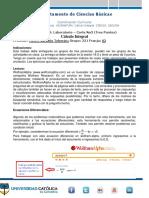 Laboratorio_CIECO221 (1)