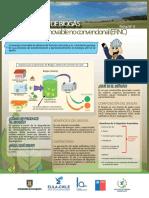 Valorizacion de Biogas