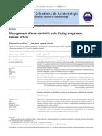 keamanan obat analgetik.pdf