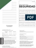 1Seguridad.pdf