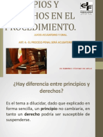 Principios y Derechos en El Procedimiento.