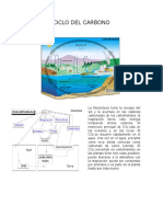 analisis bio (1)