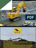 Brse Company Profile Bic