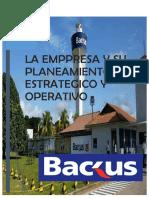 Planeamientooperativo y Estrategico de Backus