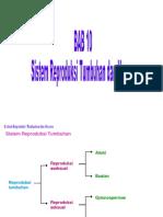 bab10sistemreproduksitumbuhandanhewan-180115065723