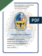 Enfermedades en Bolivia-Mita Gareca Alvaro