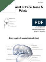 Development of Face Palate