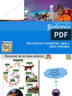clase3biomolculasinorgnicasaguaysalesminerales-160404123342