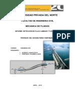 Informe Ensayo de Flujo Laminar y Turbulento-1