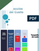 Musculosdelcuellomajo 130608101826 Phpapp02 (1) (1)