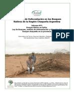 REDAF 2012 Informe Deforestacion 1 Salta Dic2012