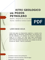 Registro Geologico de Pozos Petrolero