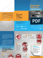 TRIPTICO-CANCER-BUCAL (1)