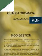 Biodigestion Personal