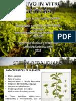 Cultivo in Vitro de Stevia