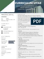 curriculum vitae.pdf