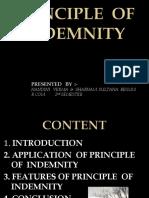 Principles of Indemnity
