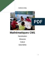Livre Maths CM1 1