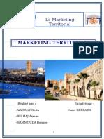 -Rapport-Marketing-Territorial-FINAL-doc.doc