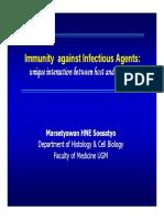 Imunol-infeksi