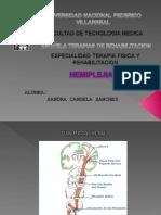 63525156-hemiplejia-1.ppt