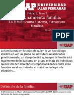 PPF U2 T7 2019 - Funcionamiento Familiar, Estructura y Sistema