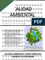 Calidad Ambiental1