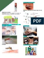 Desinfección Del Agua Enfermeria
