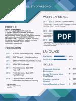 Contoh CV profesional