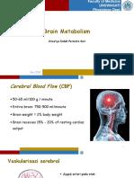 Metabolisme Otak