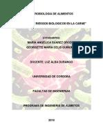 Analisis de Riesgos Biologicos en La Carne
