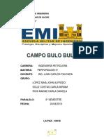 BULO BULO PERFORACION.docx