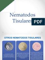10. Nematodos Tisulares
