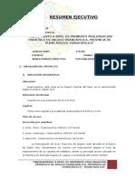 Resumen Ejecutivo Francisco de Angulo Corr