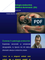durerea de Cauză Endocrina -neuropatia Diabetică Dureroasă