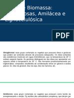 Tipos de Biomassa_ Oleaginosas, Amilácea e Lignocelulósica