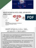 Histofisiología Del Aparato Urinario