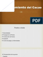 Curso de Cacao