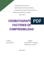 Cromatografía (Trabaja)
