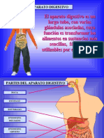 Aparato Digestivo 40789 17450