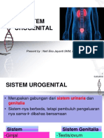 Anfis Uro Genital